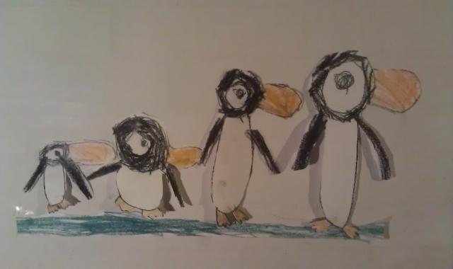 nuurs pingviner
